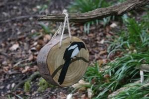 British Birds treasure trail