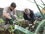 Learning-disabled-man-in-allotment-